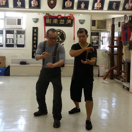 Practical Wing Chun Private Classes